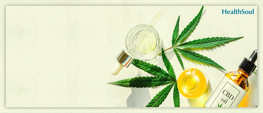 What is CBD oil and Where to Buy It | HealthSoul
