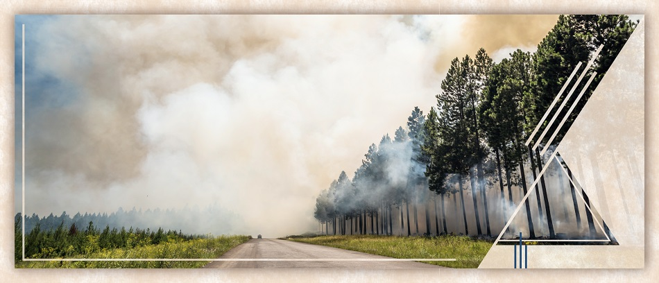 Wildfires and Health | HealthSoul