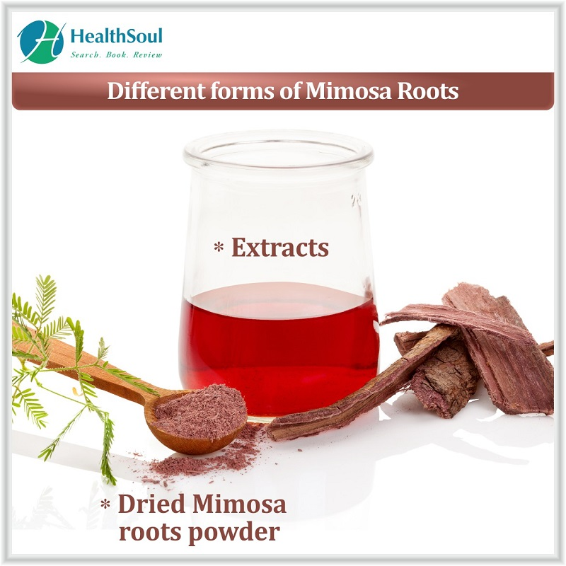 Different forms of Mimosa Root