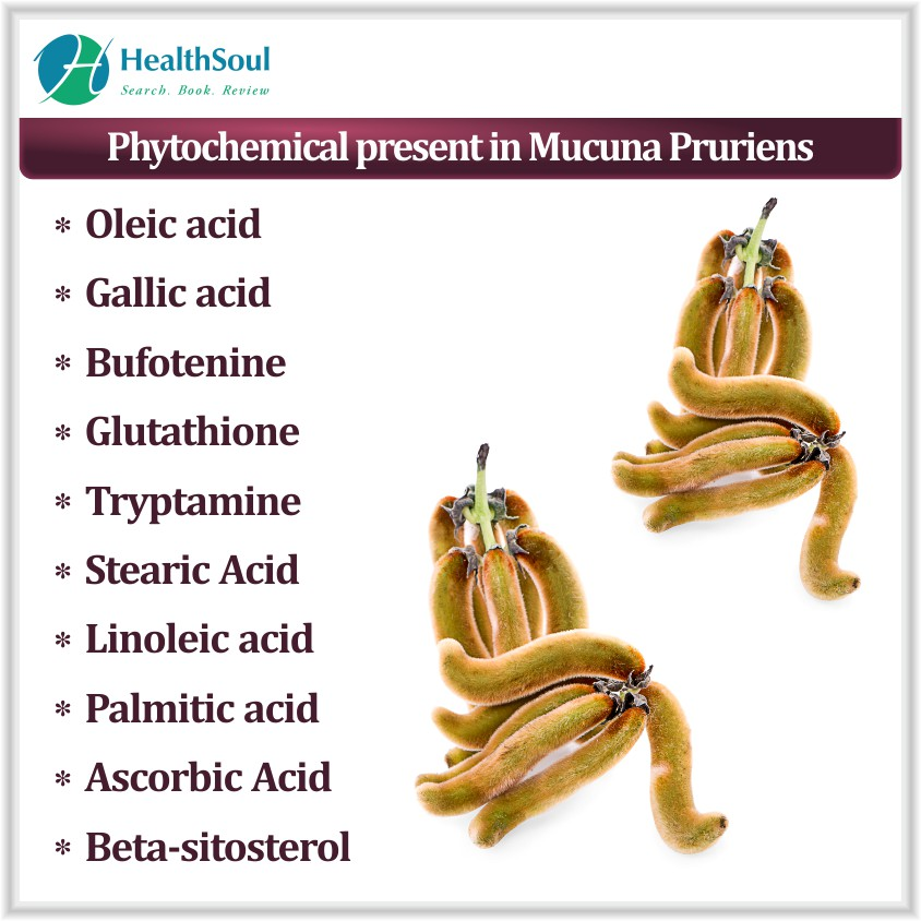 Phytochemical present in Mucuna Pruriens