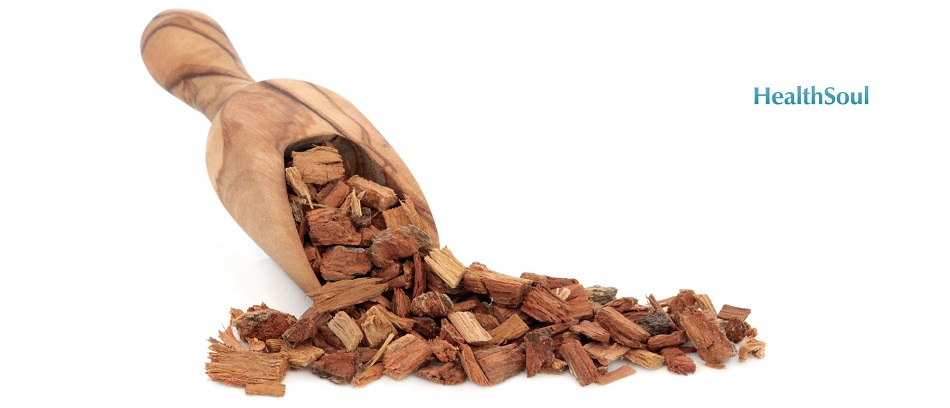 Pine bark extract benefits | HealthSoul