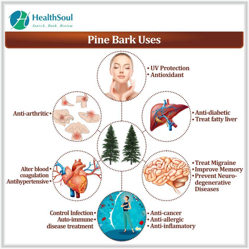 Pine bark extract Uses