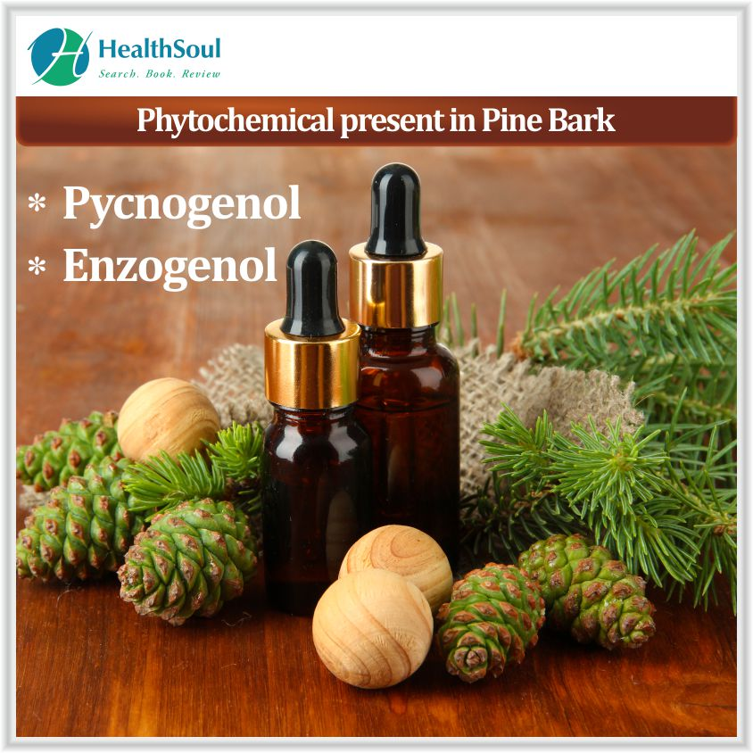 Phytochemical present in Pine bark extract