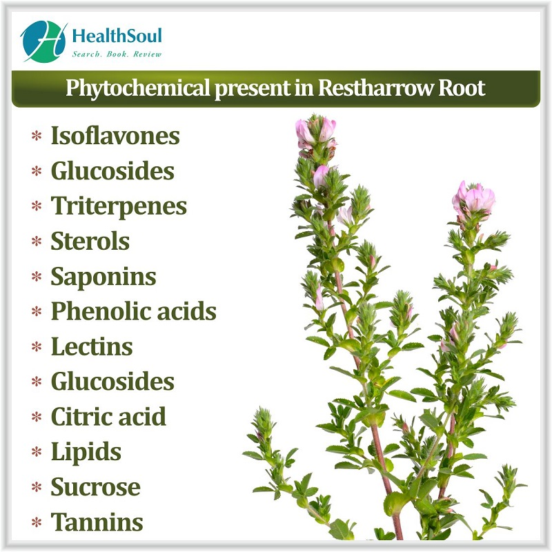 Phytochemical present in Restharrow root