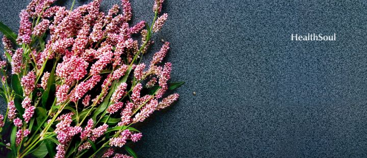 Smartweed or Polygonum hydropiperoides benefits | HealthSoul
