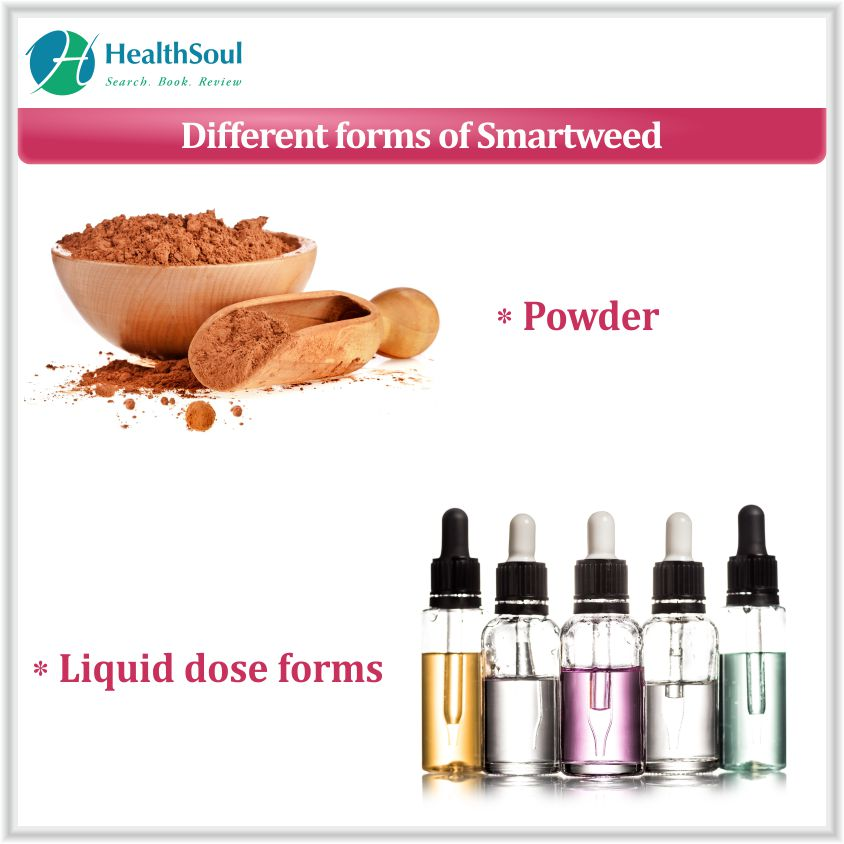 Different forms of Smartweed
