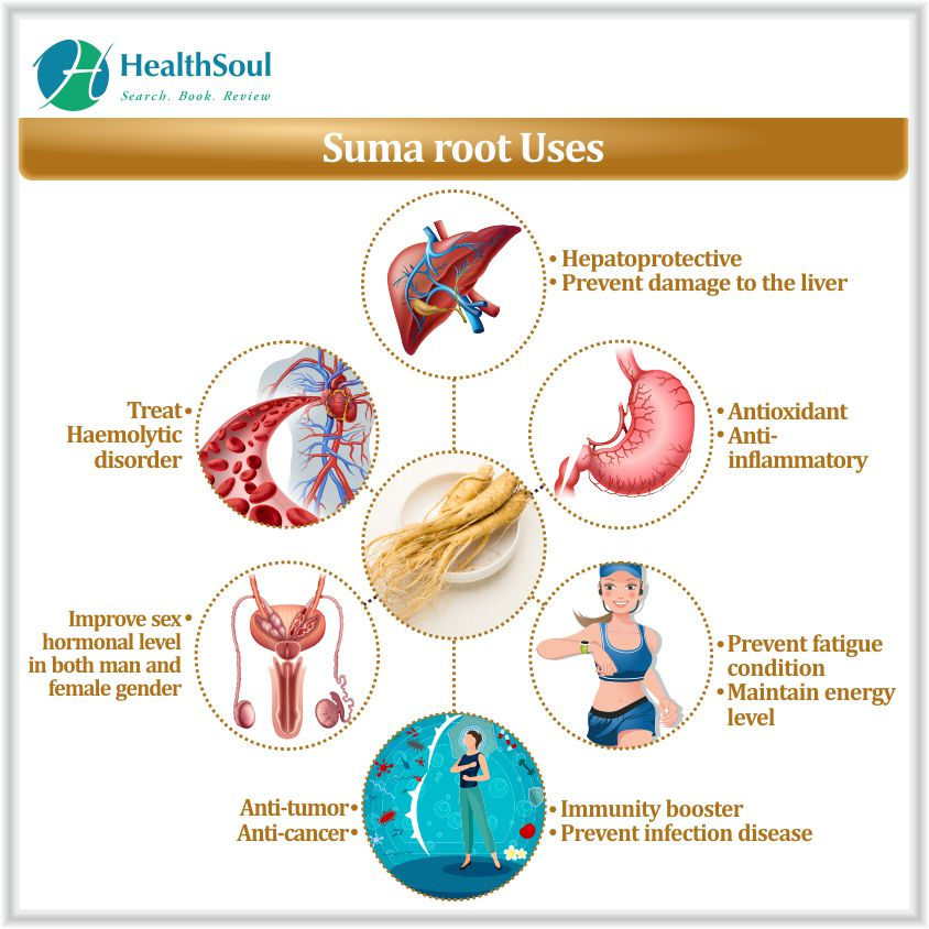 Suma root Uses