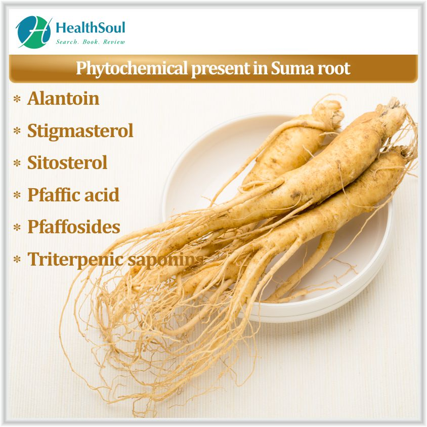Phytochemicals present in Suma root