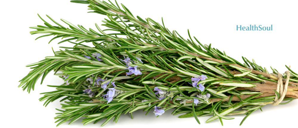 Health Benefits of Rosemary | HealthSoul