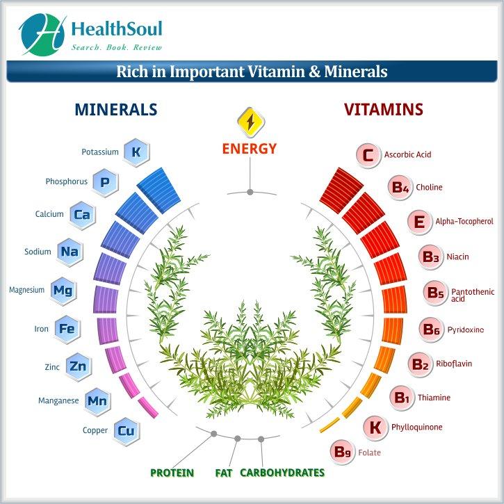 Rich in important vitamin minerals