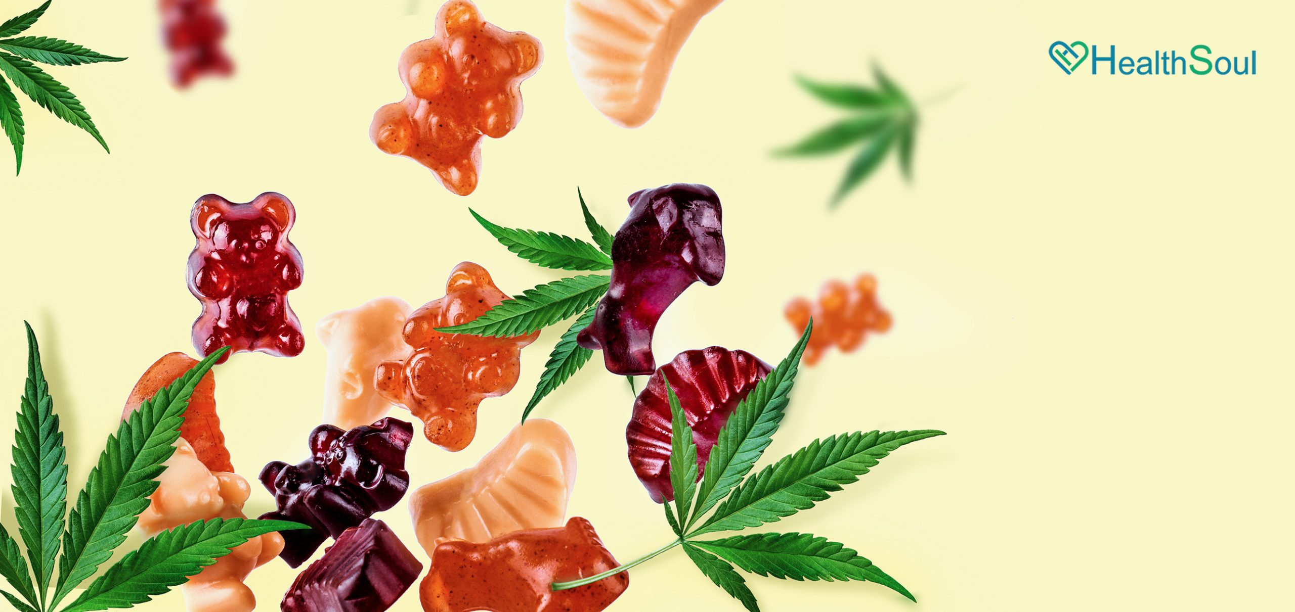 What To Expect From CBD Gummies Benefits   HealthSoul
