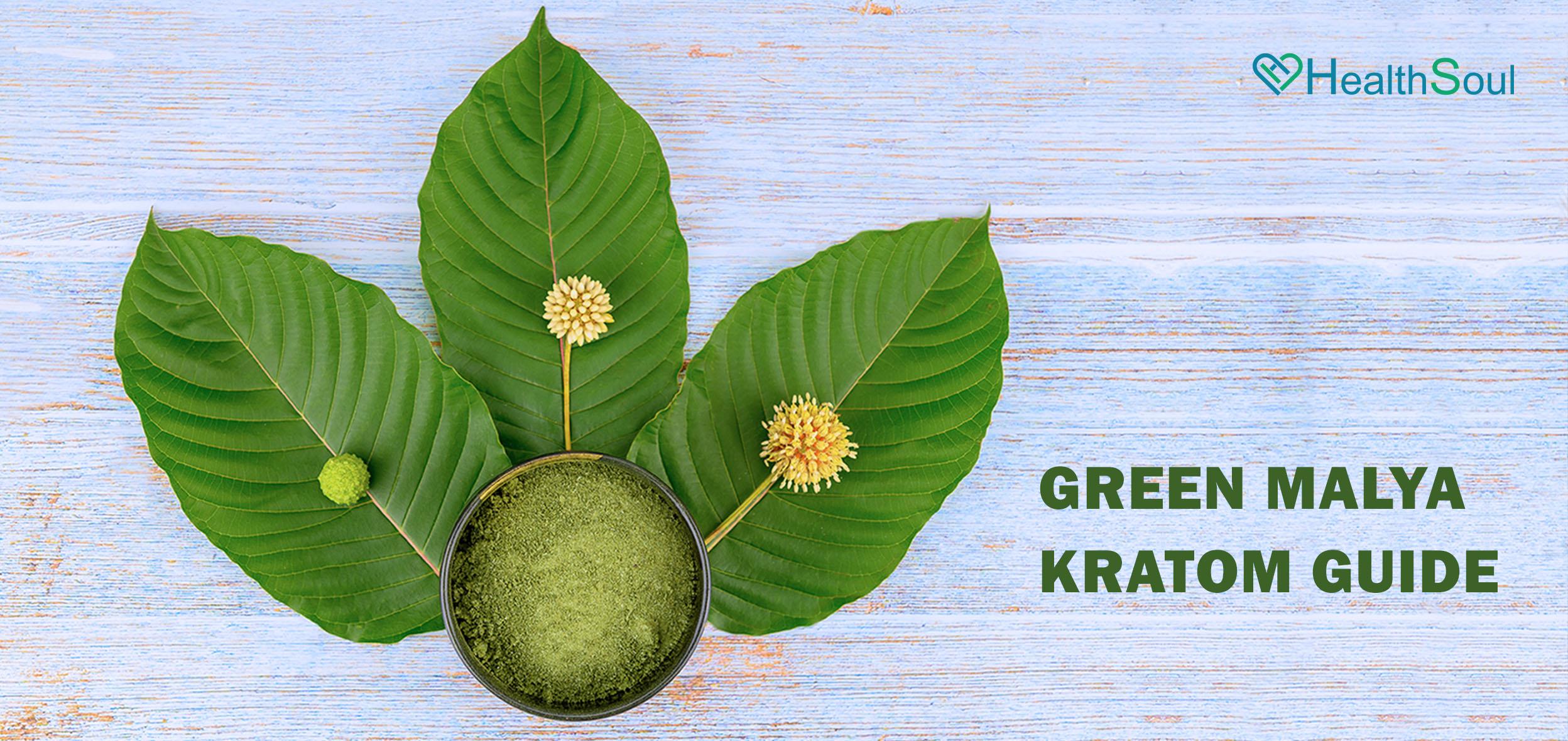 Green Malay Kratom Guide   HealthSoul