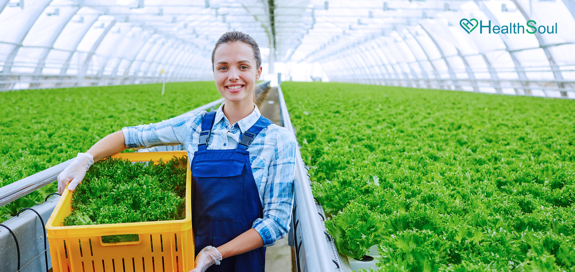 The Challenge of Feeding The World How Agricultural Technology is Helping | HealthSoul